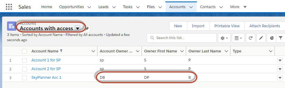 Salesforce Troubleshooting - Accounts with access