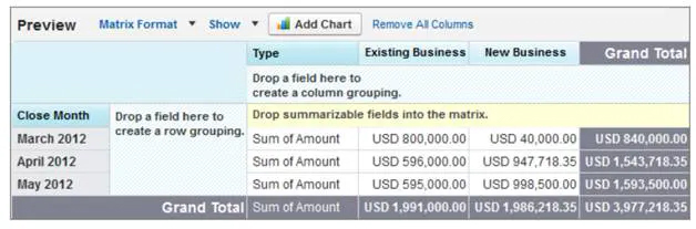 Matrix Report in Salesforce